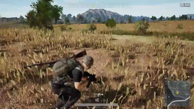 Watch and share Hacks GIFs and Pubg GIFs by tyrant84 on Gfycat