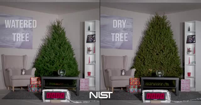 Watch and share Christmas Tree Fire GIFs and Fire Safety GIFs on Gfycat