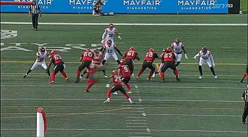Watch and share Mcmahon Stadium GIFs and Reggie Begelton GIFs by Archley on Gfycat