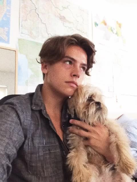 Watch and share Cole Sprouse GIFs on Gfycat
