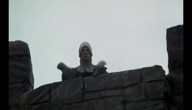 Watch and share Monty Python GIFs and Taunting GIFs on Gfycat