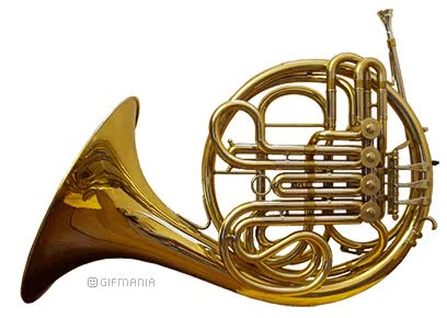 Watch and share French Horn animated stickers on Gfycat