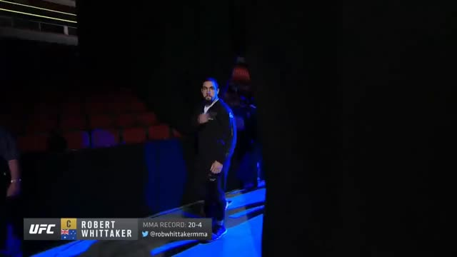 Watch and share Mma GIFs and Rda GIFs on Gfycat