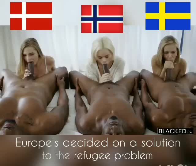 scandinavia: A gif that a mate redditor requested.