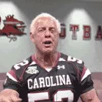 Watch Rick Flair Gamecock GIF on Gfycat. Discover more related GIFs on Gfycat