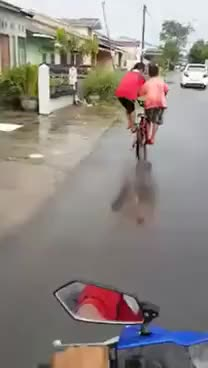 Watch and share Two Kids, One Bike! GIFs on Gfycat