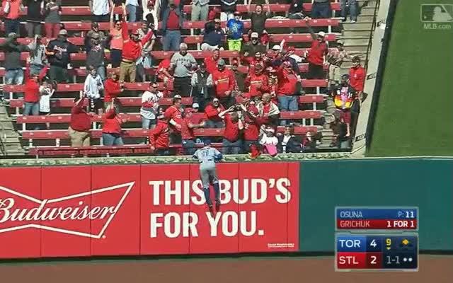 Watch and share Cardinals Fan GIFs by fergoe on Gfycat