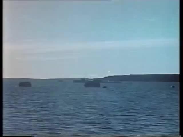 Watch Soviet nuclear torpedo test (1955) GIF by @luke_username on Gfycat. Discover more Atomic bomb, Destruction, Joe-17, Novaya Zemlya, Nuclear, Soviet Union, atomic cloud, nuclear tes, nuclear weapon, spray water GIFs on Gfycat