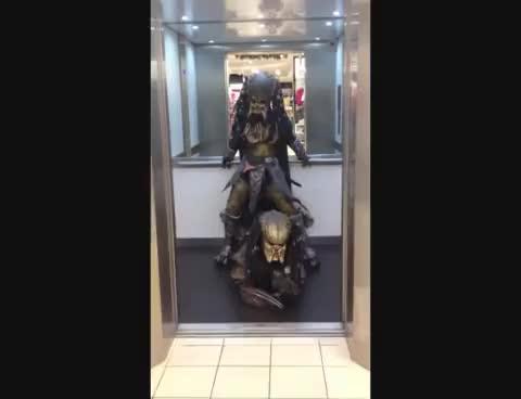 Watch Gangnam pred style GIF on Gfycat. Discover more gangnam, predator GIFs on Gfycat