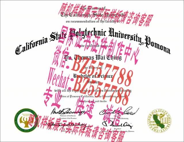 Watch and share 做个假的中京女子大学毕业证成绩单[咨询微信:BZ557788]办理世界各国证书证件 GIFs on Gfycat