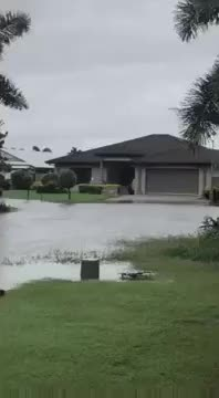 Watch and share Taking Advantage Of Flooded Streets In Australia GIFs by Bob on Gfycat