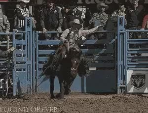 Watch and share Rodeo Bull Riding GIFs on Gfycat