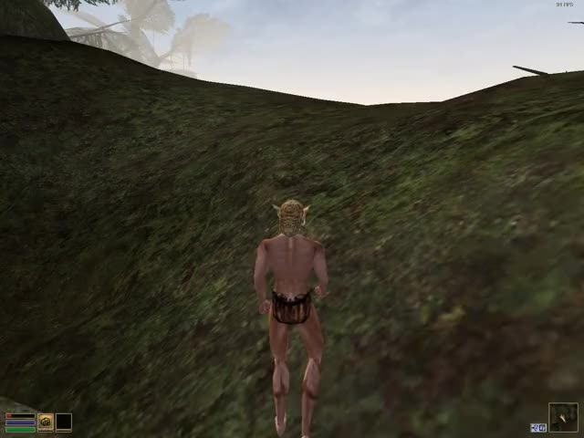 Watch and share Morrowind 2019-10-20 19-20-47 GIFs by wolfpaladin on Gfycat