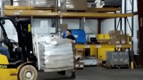 Watch Osha GIF on Gfycat. Discover more related GIFs on Gfycat