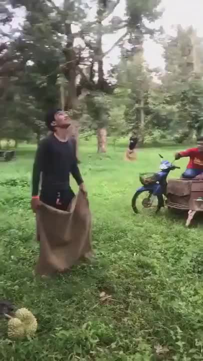 Catching a durian - gif