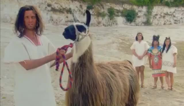Watch Llama GIF on Gfycat. Discover more Llama GIFs on Gfycat
