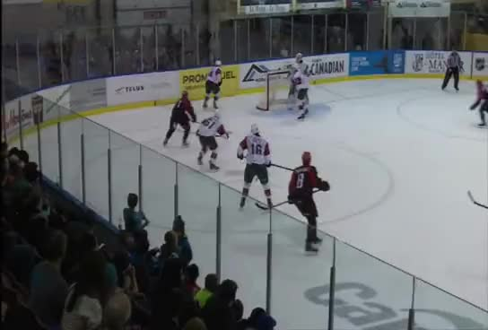 Faits saillants vs Halifax (03-12-16)