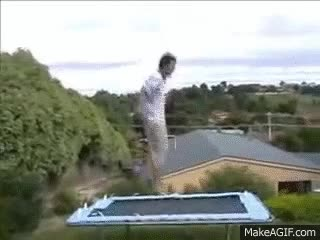Watch and share Trampoline Hump Dog Original GIFs on Gfycat