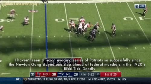 Watch Texan Evading Patriots GIF by Unsurprised (@unsurprised) on Gfycat. Discover more dfo, door flies open, doorfliesopen, doorfliesopen.com, football, houston texans, new england, new england patriots, nfl, patriots, quotables, roger goodell is a national disgrace, tackle, texans, week 3 GIFs on Gfycat