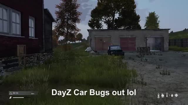 Watch Car Bug GIF by Xbox DVR (@xboxdvr) on Gfycat. Discover more DayZGamePreview, Rosmaruss, xbox, xbox dvr, xbox one GIFs on Gfycat