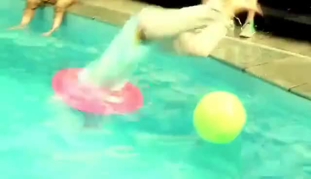 Watch this swim GIF on Gfycat. Discover more one direction, swim, swimmer, swimming GIFs on Gfycat