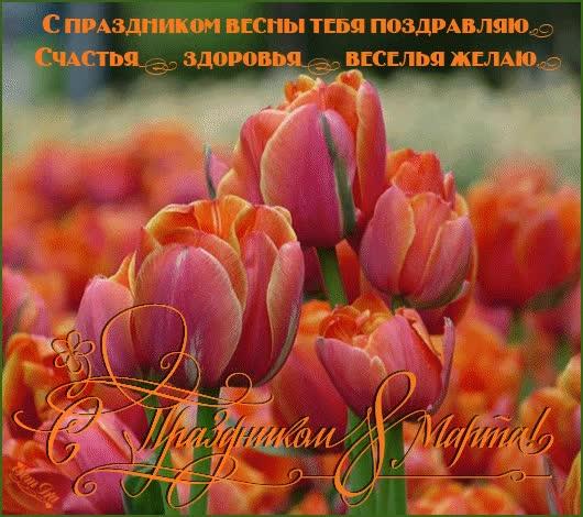 Watch and share С Праздником 8 Марта ! GIFs on Gfycat