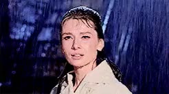 Watch Book Inspiration GIF on Gfycat. Discover more Breakfast at Tiffany's, Holly Golightly, audrey hepburn, classic, gif, movie, old, old film GIFs on Gfycat