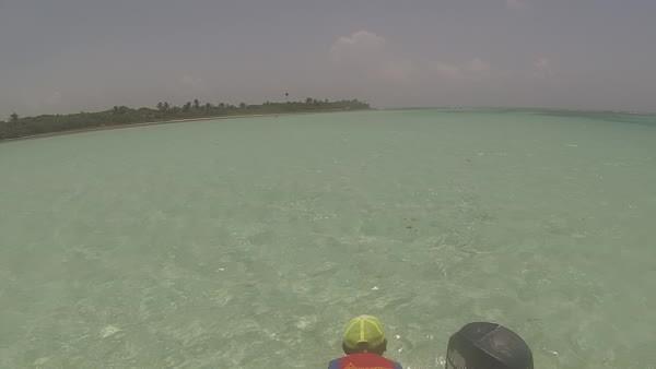 Sian Ka'an natural pools GIFs