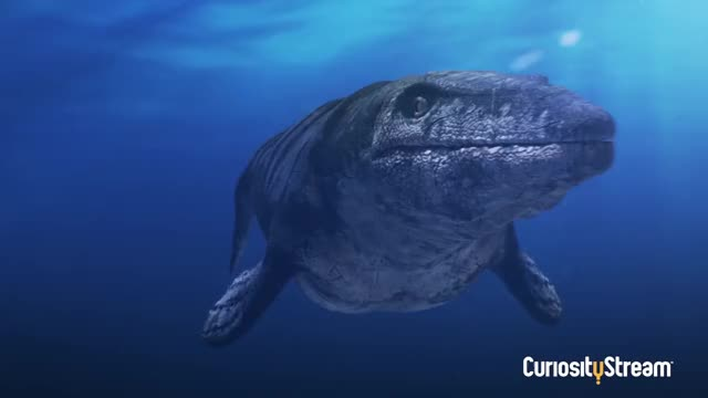 Watch Ancient Earth's Top Prehistoric Predators GIF on Gfycat. Discover more Ancient Earth, CuriosityStream, Earth, Extinction, History, Pixeldust, Prehistoric, Prehistory, T-Rex, Tyrannosaurus GIFs on Gfycat