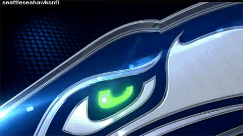 Seattle seahawks GIFs