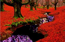 Watch and share Gif Trippy Psychedelic Animation Surreal Digital Art Portugal Red Forest GIFs on Gfycat