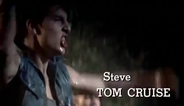 Watch this trending GIF on Gfycat. Discover more steve GIFs on Gfycat
