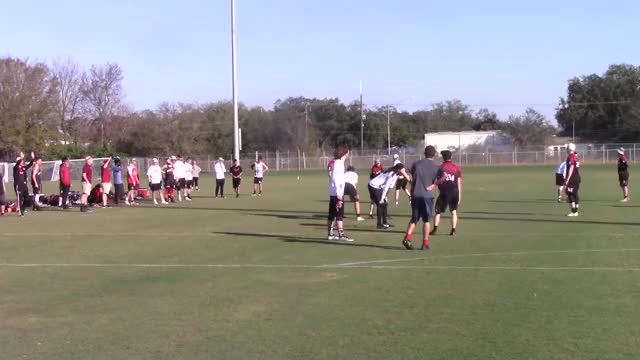 Watch Defense - Bad Upline GIF by Gamecock Ultimate Film Clips (@gamecockultimate) on Gfycat. Discover more People & Blogs, South Carolina Gamecock Ultimate GIFs on Gfycat