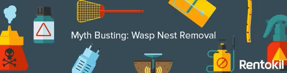 Watch and share Wasp-Nest-Removal-Gif GIFs on Gfycat