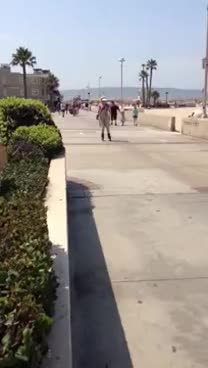 Woman Rollerblading GIFs