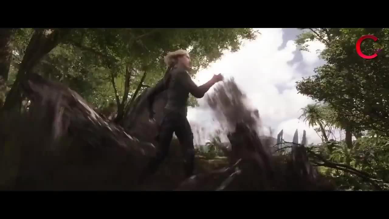 Avengers Infinity War Wakanda Fight Scene In Hindi Part 2