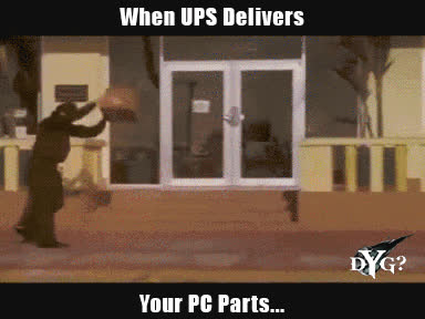 Ace Ventura, Delivery, PC Building, Delivery Drivers Be like... GIFs