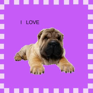 "Watch and share ""animated-shar-pei-image-0005"" GIFs on Gfycat"