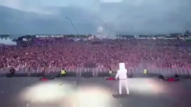 Watch My brain at 3am GIF by Cindy046  (@cindy046) on Gfycat. Discover more EDM, Marshmello, can't sleep, concert, copy, crowd, crowd control, follow, hop, imitate, left and right, live, stage GIFs on Gfycat