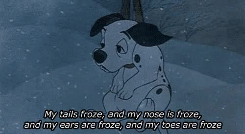 Watch and share Winter, Cold, Puppy, Dalmatian, Frozen GIFs on Gfycat