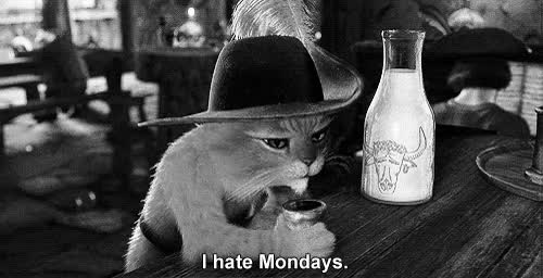 Watch edit GIF on Gfycat. Discover more Mondays, b&w, b&w edit, cat, edit, gif, hate, m, my, rozchwianie, shrek GIFs on Gfycat