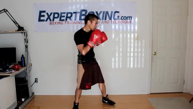 Watch How to Throw a Left Hook GIF on Gfycat. Discover more how to throw a left hook, left hook, right hook GIFs on Gfycat