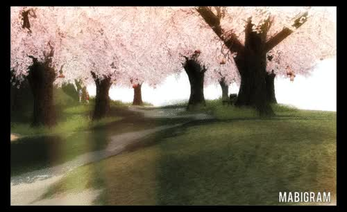 Watch and share Doki Doki Trees GIFs by coollama1 on Gfycat