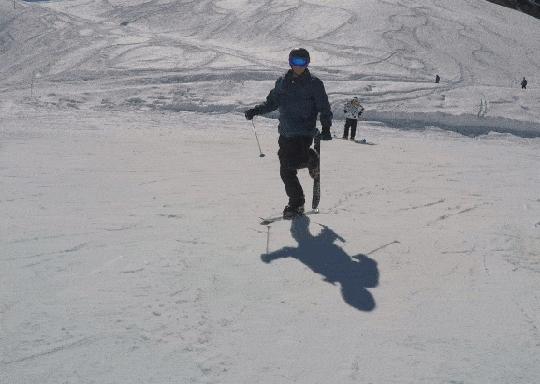 funny, running, ski, Skiing GIFs
