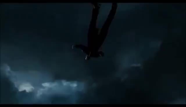 Les Misérables - Javert's Suicide GIFs