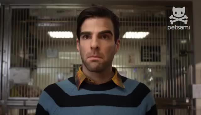 Watch and share Zachary Quinto GIFs and Dog Eat Dog GIFs on Gfycat