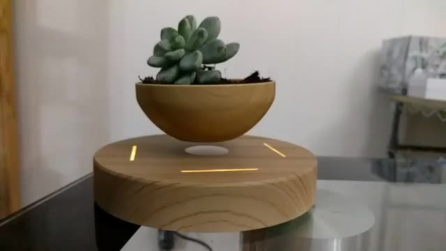 Watch and share Levitating Bonsai Pot GIFs on Gfycat