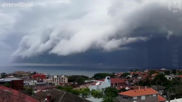 Watch and share Weathergifs GIFs and Australia GIFs on Gfycat