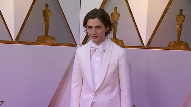 Watch and share Timothee Chalamet GIFs and Red Carpet GIFs by senne89 on Gfycat