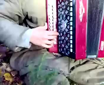 russian accordion GIF | Find, Make & Share Gfycat GIFs